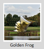 Golden Frog